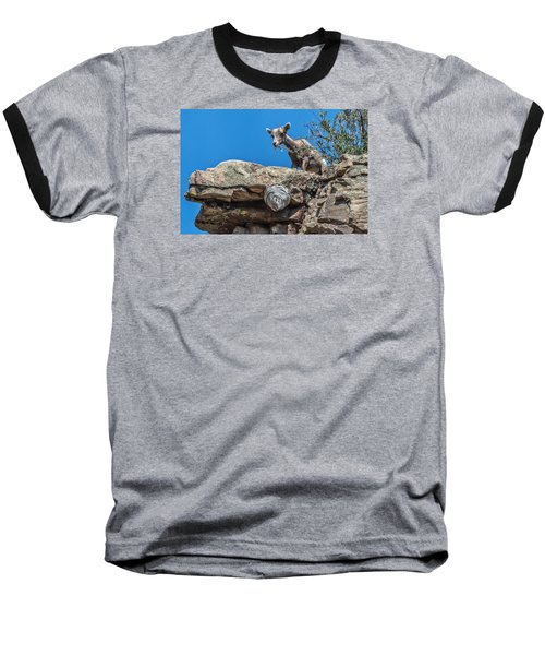 Baseball T-Shirt featuring the photograph Big Horn Lamb Overlooking Hornets Nest by Stephen  Johnson