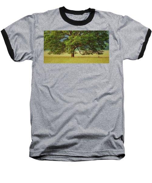 Big Oak Baseball T-Shirt