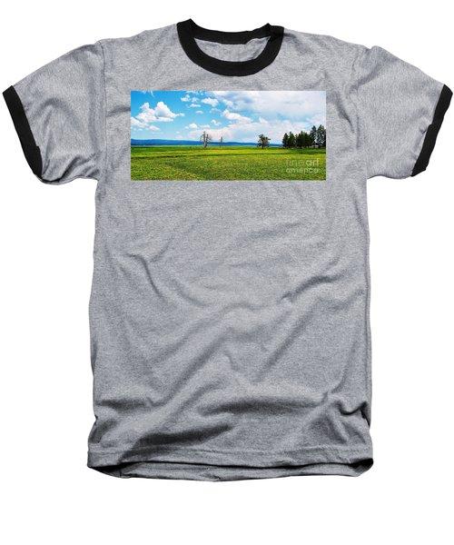 Big Summit Prairie In Bloom Baseball T-Shirt by Michele Penner