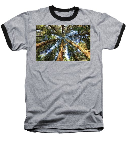 Big Trees In Olympic National Park Baseball T-Shirt
