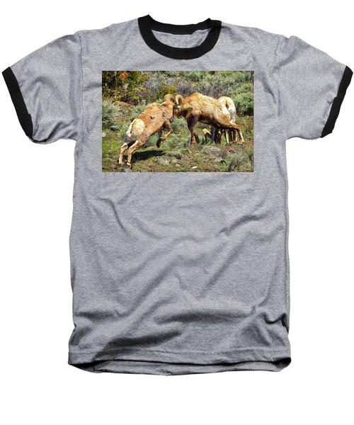 Bighorn Contact Baseball T-Shirt