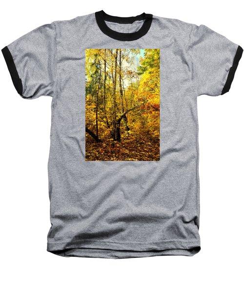 Birch Autumn Baseball T-Shirt by Henryk Gorecki