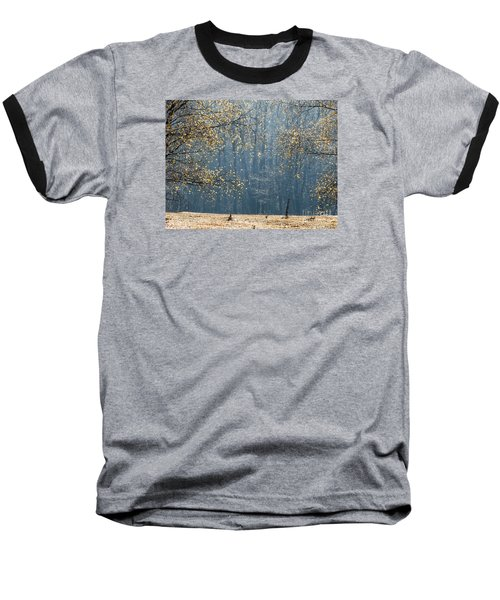 Birch Forest To The Morning Sun Baseball T-Shirt by Odon Czintos