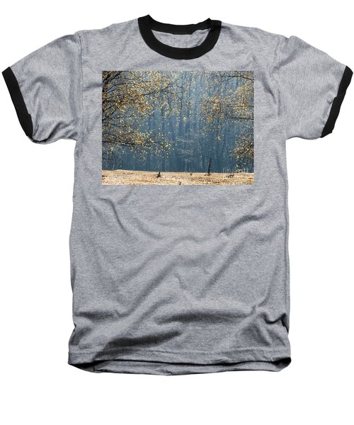 Birch Forest To The Morning Sun Baseball T-Shirt