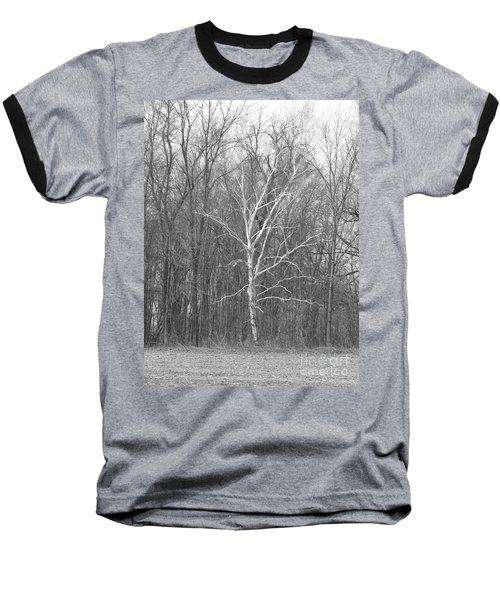 Birch In Bw Baseball T-Shirt