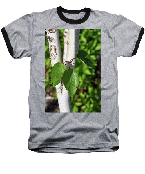 Birch Baseball T-Shirt