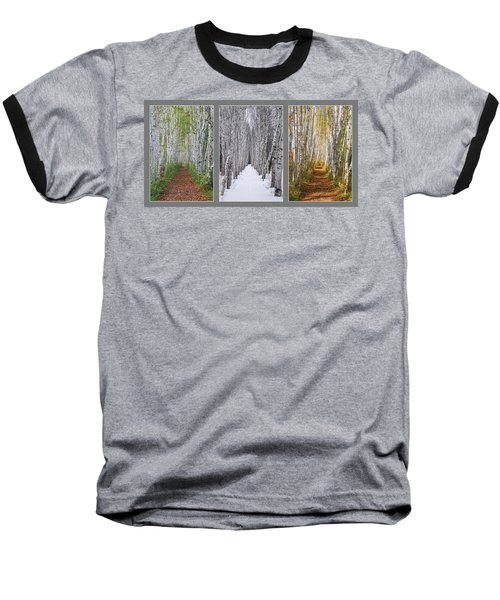 Birch Path Three Season Collage Baseball T-Shirt