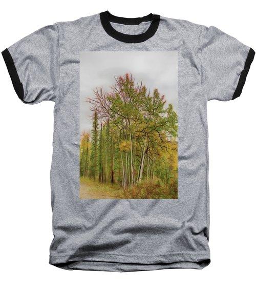 Birch Tree #1 Baseball T-Shirt