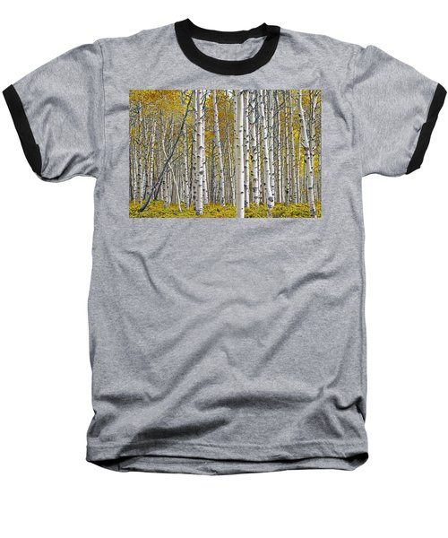 Birch Tree Grove With A Touch Of Yellow Color Baseball T-Shirt