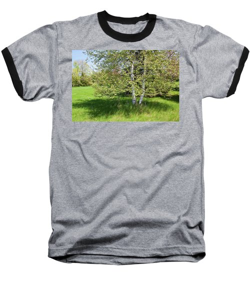 Birch Tree Baseball T-Shirt