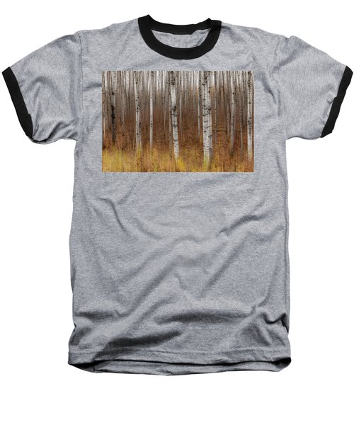 Birch Trees Abstract #2 Baseball T-Shirt