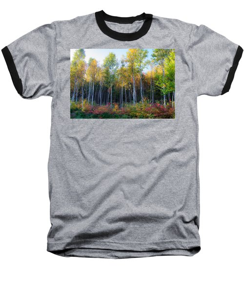 Birch Trees Turn To Gold Baseball T-Shirt