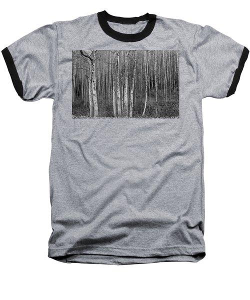 Birch Tress Baseball T-Shirt