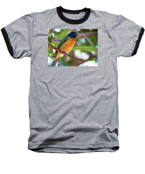 Bird 1 Baseball T-Shirt