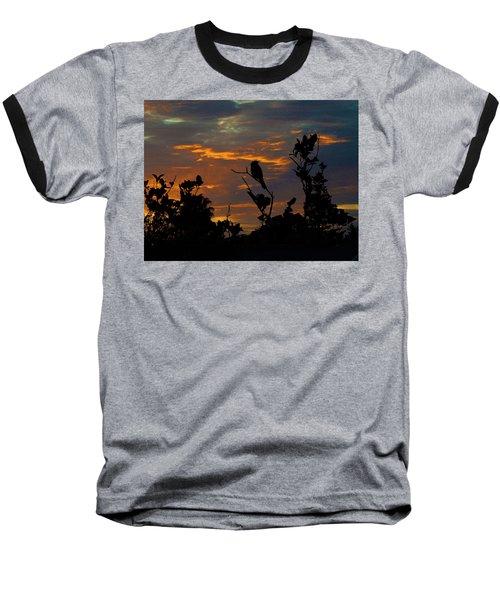 Bird At Sunset Baseball T-Shirt by Mark Blauhoefer