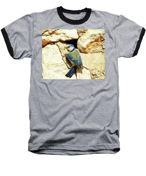 Bird Feeding Chick Baseball T-Shirt
