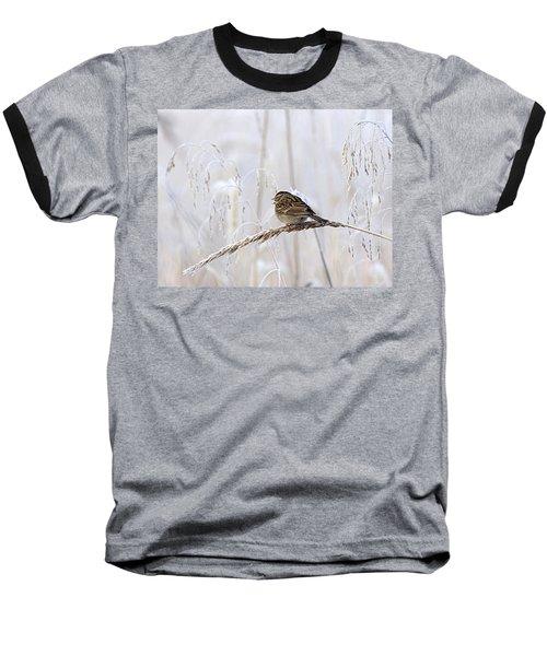 Bird In First Frost Baseball T-Shirt