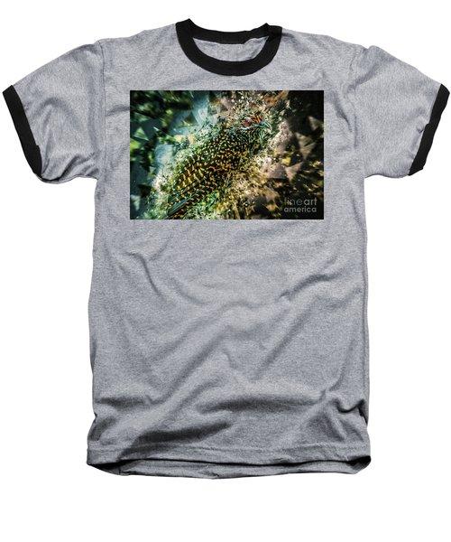 Baseball T-Shirt featuring the digital art Bird Meets Glass by Ray Shiu