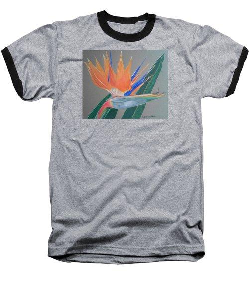 Bird Of Paradise Baseball T-Shirt by Anita Putman