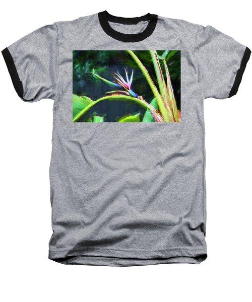 Bird Of Paradise Strelitzia Reginae 003 Baseball T-Shirt