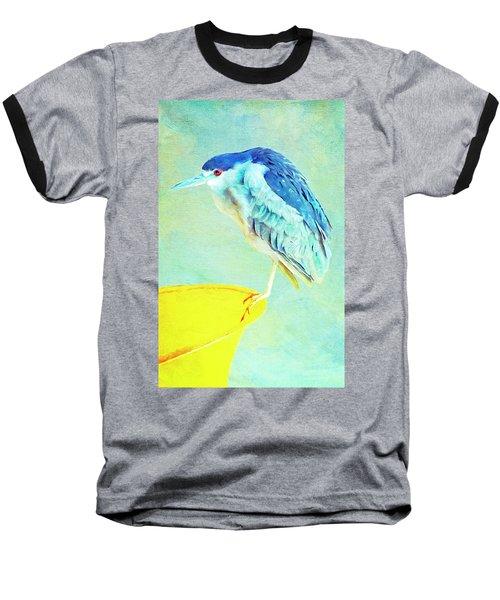 Bird On A Chair Baseball T-Shirt