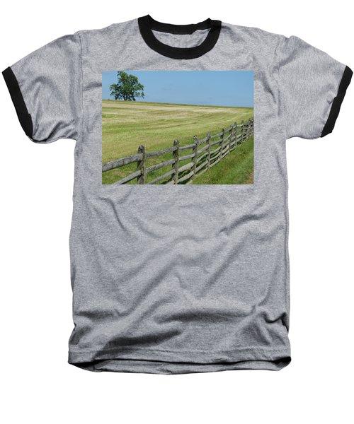 Bird On A Fence Baseball T-Shirt by Donald C Morgan