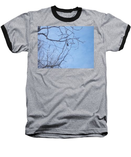Bird On A Limb Baseball T-Shirt by Jewel Hengen