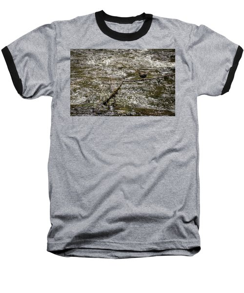 Bird On A River Baseball T-Shirt