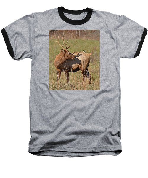Bird On My Back Baseball T-Shirt by Alan Lenk