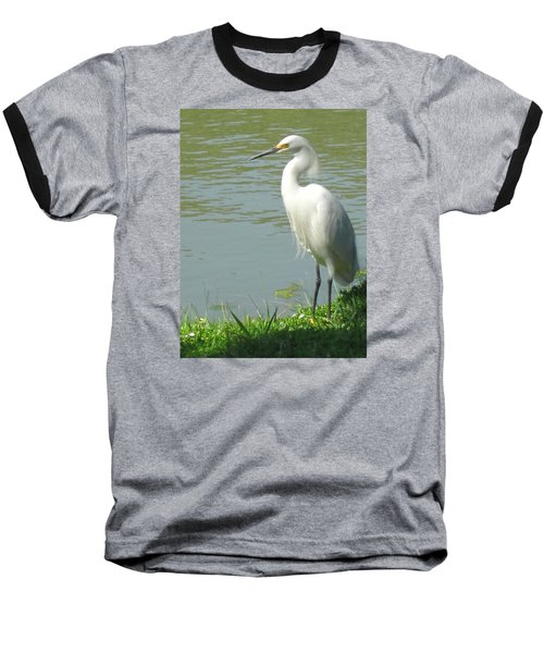 Bird Baseball T-Shirt