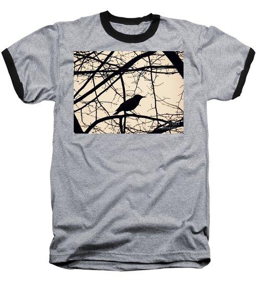 Bird Silhouette Baseball T-Shirt by Sarah Loft