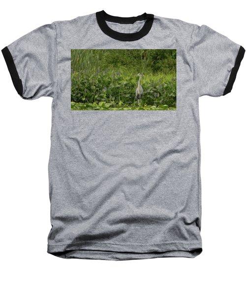 Bird Waiting Baseball T-Shirt by Mark Minier
