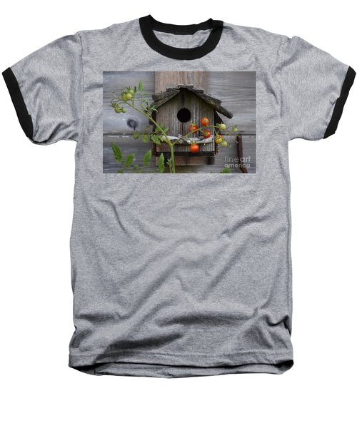 Birdhouse Baseball T-Shirt