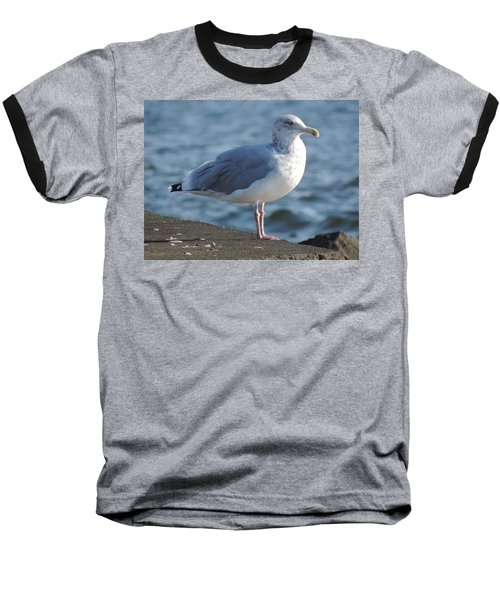 Birds In The Air  Baseball T-Shirt