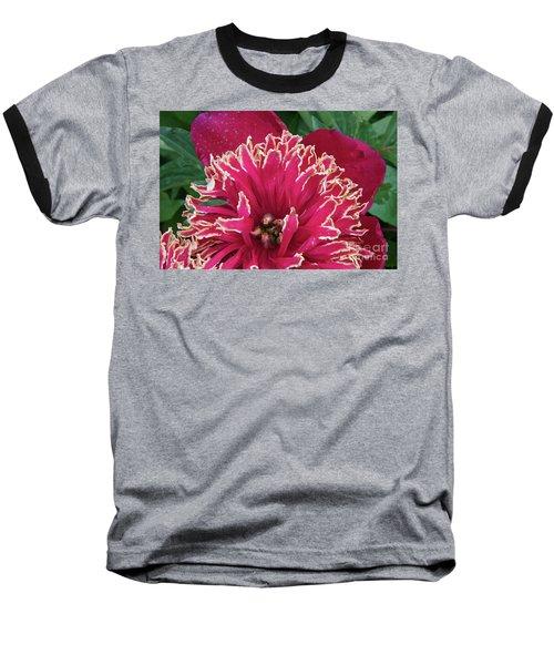 Bird's Nest Baseball T-Shirt