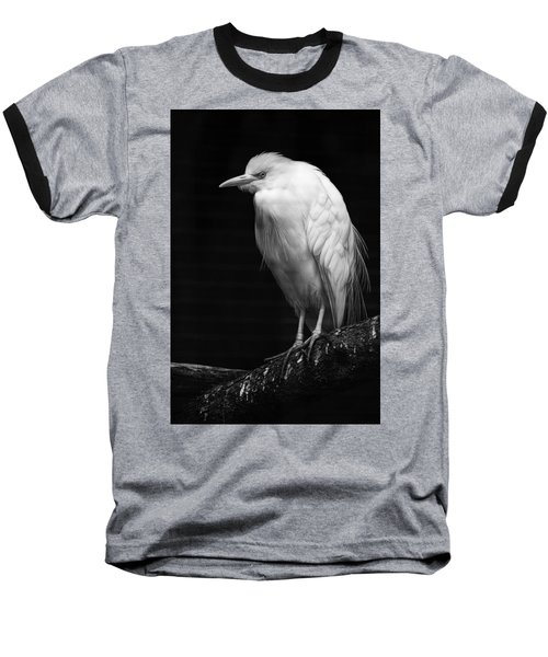 Birds Of A Feather Baseball T-Shirt