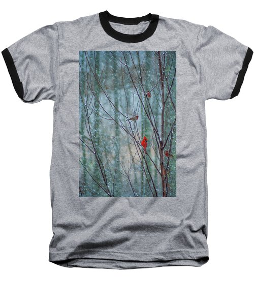 Birds On A Snowy Day Baseball T-Shirt