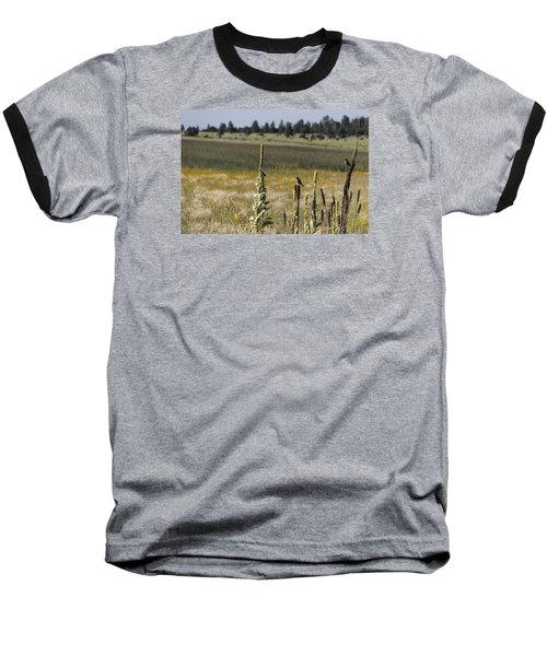 Birds On Stands Baseball T-Shirt by Laura Pratt