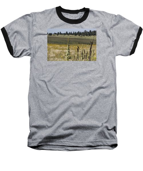 Baseball T-Shirt featuring the photograph Birds On Stands by Laura Pratt