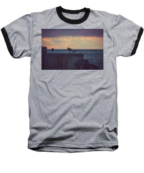 Birds Baseball T-Shirt by Scott Meyer