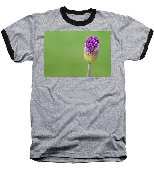 Birthing Springtime Baseball T-Shirt
