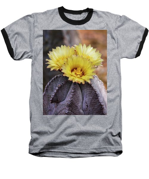Baseball T-Shirt featuring the photograph Bishop's Cap Cactus  by Saija Lehtonen