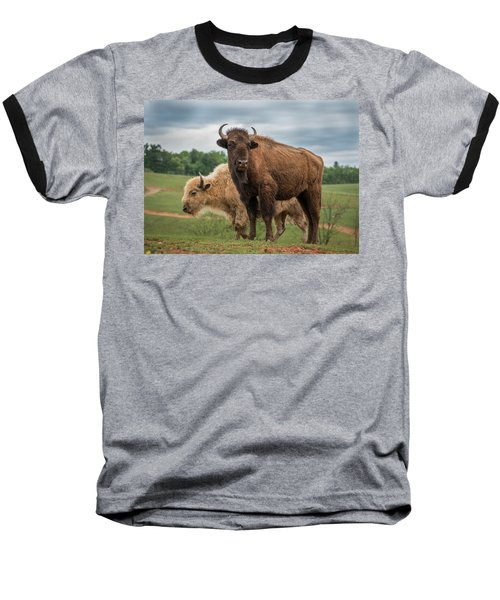 Baseball T-Shirt featuring the photograph Bison 10 by Joye Ardyn Durham