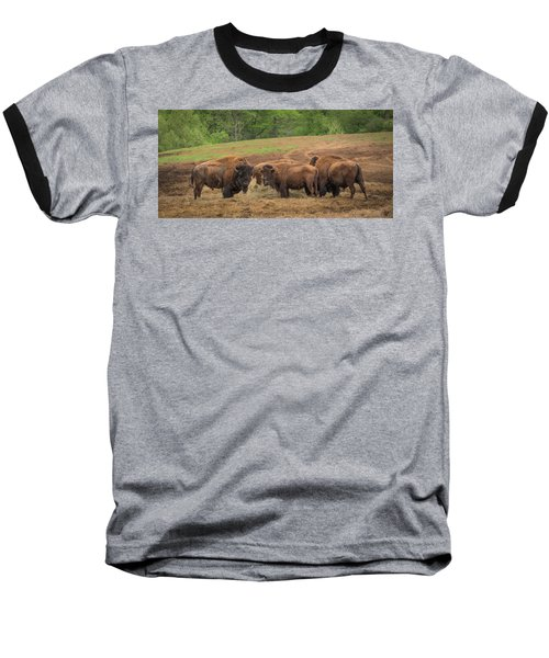 Baseball T-Shirt featuring the photograph Bison 2 by Joye Ardyn Durham