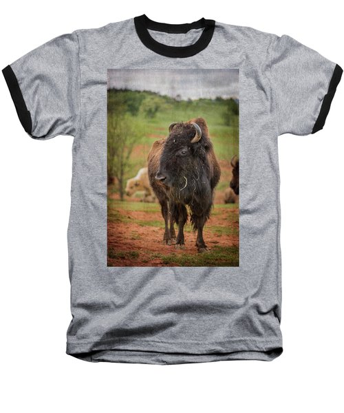 Baseball T-Shirt featuring the photograph Bison 5 by Joye Ardyn Durham