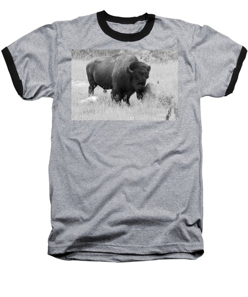 Bison And Buffalo Baseball T-Shirt