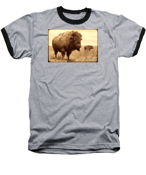 Bison And Calf Baseball T-Shirt by American West Legend By Olivier Le Queinec