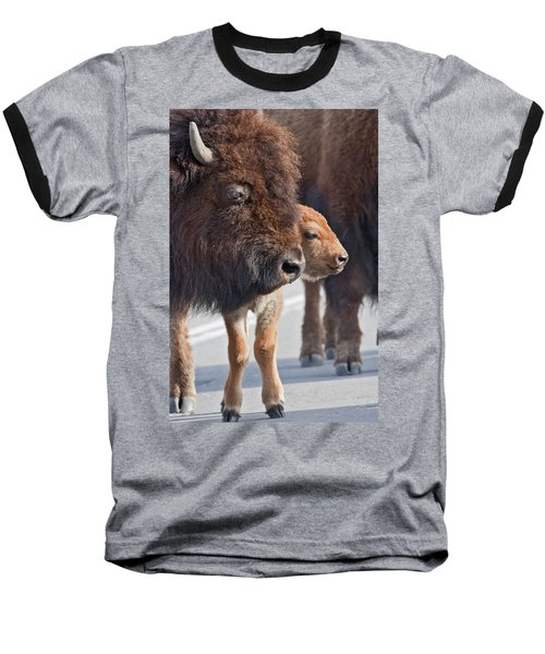 Baseball T-Shirt featuring the photograph Bison Family by Wesley Aston