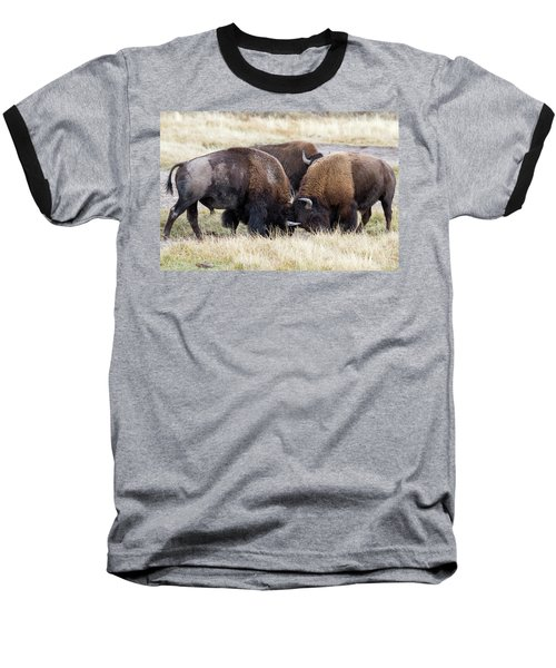 Baseball T-Shirt featuring the photograph Bison Fight by Wesley Aston
