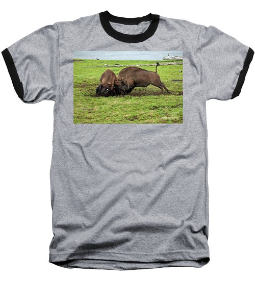 Bison Fighting Baseball T-Shirt by Cindy Murphy - NightVisions